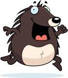 Hedgehog Running Stock Image