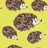 Hedgehog seamless pattern Stock Photography