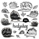 Hedgehog set hand drawn figures. Hedgehog. Animals single icon in cartoon style vector symbol stock illustration web Stock Images