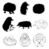 Hedgehog set vector Royalty Free Stock Photo