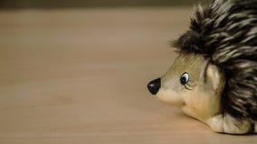 Hedgehog. Side view of Hedgehog head Stock Images