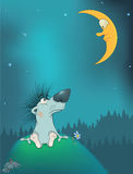 Hedgehog and the moon. Cartoon. The hedgehog sitting on a hill looks at the moon at night Royalty Free Stock Photo