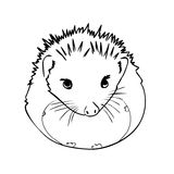 Hedgehog sketch drawing isolated Stock Photo
