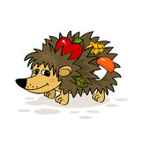 Hedgehog. Smiling hedgehog with apple, mushroom and leaf vector illustration vector illustration