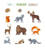 Vector set of wild forest animals made in cartoon style. Royalty Free Stock Images