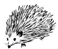 Hedgehog spontaneous sketch royalty free stock image