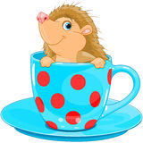 Hedgehog in the tea cup Stock Photography