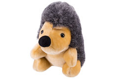Hedgehog toy. With white background Royalty Free Stock Photos