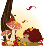 Hedgehog under mushroom Stock Photo