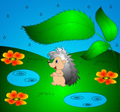 The Hedgehog under sheet Royalty Free Stock Image