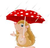 Hedgehog under umbrella presenting Royalty Free Stock Images