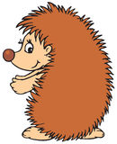 Hedgehog (vector clip-art) Stock Photo