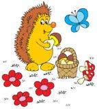 Hedgehog (vector clip-art) Stock Photo