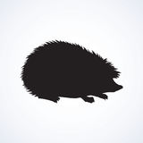 Hedgehog. Vector drawing Royalty Free Stock Photos