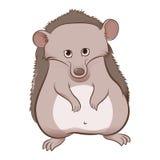 Hedgehog. Vector image of an cartoon grey Hedgehog Stock Image