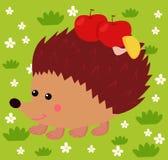Hedgehog walking Royalty Free Stock Photos