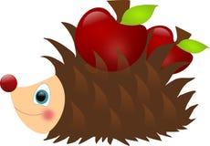 Hedgehog wiht apples Stock Photos