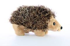 hedgehogs стоковые изображения rf
