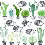 Hedgehogs & cactus. Seamless  pattern. Royalty Free Stock Images