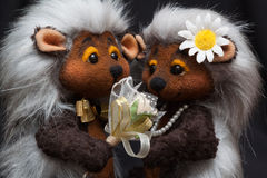 Hedgehogs couple Stock Images
