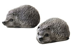 Hedgehogs for Garden Design Royalty Free Stock Photography