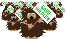 Hedgehogs save wildlife. A group of hedgehogs demonstrate with banners to save wildlife, vector Royalty Free Stock Images