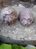 Hedgehogs in stone Royalty Free Stock Image
