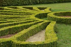 Hedgerow  bends at castle, Ludwigsburg Royalty Free Stock Images