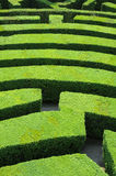 Hedges Labyrinth Royalty Free Stock Photo