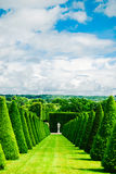 Hedges lines and lawn, Versailles Chateau, France Stock Image