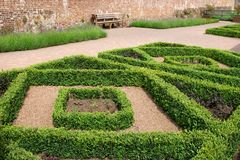 Hedging Topiary Stock Images