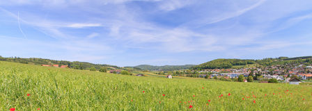 Hedingen, Suiza en primavera Imagenes de archivo