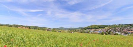 Hedingen, Switzerland in Spring. Hedingen, Switzerland  - landscape in Spring Stock Images
