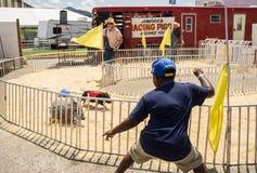 Hedrick's Racing Pigs. Salem, VA – July 1st: A young spectator at Hedrick's racing pigs show at the 17th annual Salem Fair, Salem, VA, USA on the 1st Royalty Free Stock Image