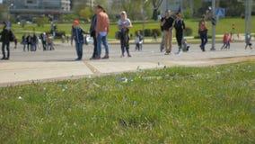 Heel wat confettien in de stad - slowmo 180 fps stock footage