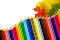 Heel wat esdoornbladeren en kleurpotloden Royalty-vrije Stock Foto's