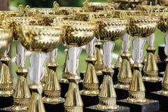 Heel wat gouden koppen voor kampioen royalty-vrije stock foto's