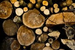 Heel wat hout in de tuin Stock Fotografie