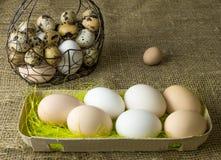 Heel wat kippeneieren en kwartelseieren liggen van een metaalstructuur die in de vorm van een hart en een oor op de houten lijst  Royalty-vrije Stock Foto