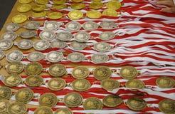 Heel wat medailles Royalty-vrije Stock Fotografie