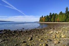 Heel wat rotsen op een overzees strand Royalty-vrije Stock Foto's