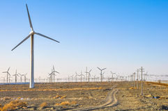 Heel wat windgenerators op het gebied Stock Fotografie