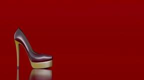 heeled höga skor Arkivfoton