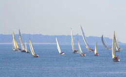 Heeling boats race Royalty Free Stock Images