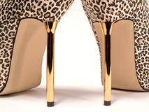 Heels Royalty Free Stock Photo