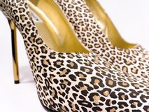 Heels Royalty Free Stock Photography