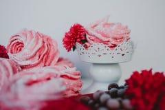 Heemst van Amerikaanse veenbes, roze Roze bloemen Eigengemaakt zefier Stock Fotografie