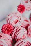 Heemst van Amerikaanse veenbes, roze Roze bloemen Eigengemaakt zefier Stock Foto's