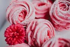 Heemst van Amerikaanse veenbes, roze Roze bloemen Eigengemaakt zefier Royalty-vrije Stock Afbeeldingen