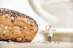 ?heerful baker standing near bun with poppy seeds Stock Images
